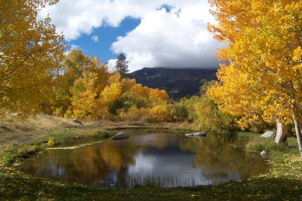 Mammoth Lakes Fall Colors, Best hikes in Mammoth Lakes, Mammoth Lakes Basin, Mammoth Creek, Mammoth Lakes
